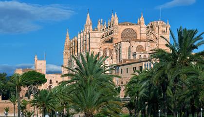 Lush palm trees and Cathedral of Palma de Mallorca or La Seu. Spain