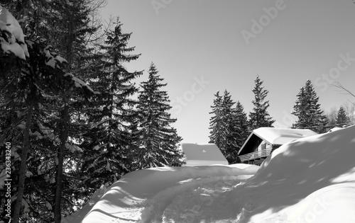 Chalet In Legno Con Neve E Pini In Bianco E Nero Stock Photo And