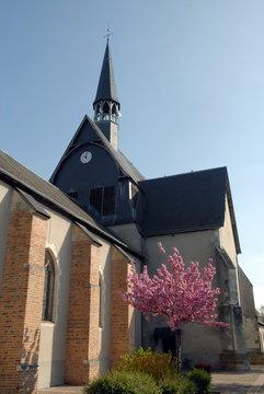 Ville de Salbris, église Saint-Georges et son clocher, un arbre en fleur en premier plan, département du Loir et Cher, France