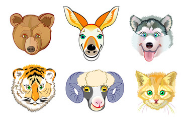 Set of different cute animals heads on white background. Print for children school textbook. Vector cartoon image.