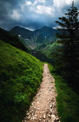mountain walk to the dark landscape