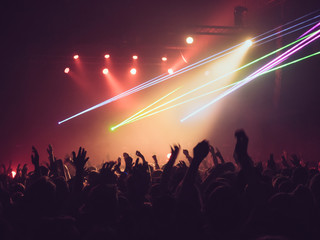 Group of people dancing and cheering during music concert