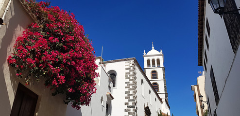 the old white church building cathedral religion with blue sky and flowers