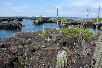 Tunnel di lava Isola Isabela, Galapagos