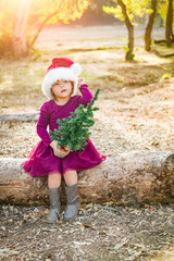 Cute Mixed Race Young Baby Girl Having Fun With Santa Hat and Christmas Tree Outdoors On Log