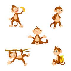 vector illustration of a cute cartoon monkey