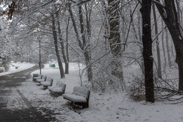 Amazing Winter Landscape with snow covered trees in South Park in city of Sofia, Bulgaria
