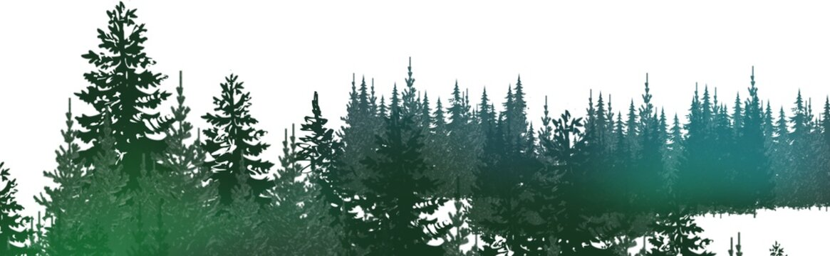 winter wonderland magical pine forest with glowing lights, mist and mood, snowy, wintery woodland treeline in wide header banner illustration