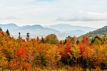 Warm Autumn Colors in New England