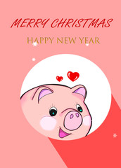 cartoon pink piggy with pink background,comic,cartoon