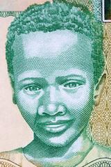 Gambian boy a portrait from Gambian money