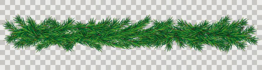 Christmas Green Twigs Transparent Fototapete