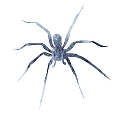 gray silhouette of spider watercolor