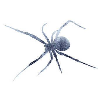 isolated, gray silhouette of spider watercolor