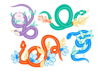 Snakes and flowers. Hand drawn colored vector set. All elements are isolated