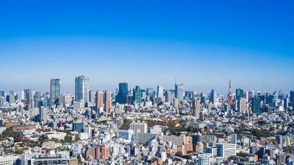 東京スカイライン
