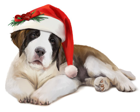 St. Bernard's dog in Santa's hat. Watercolor painting