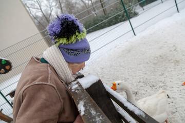 Seniorin mit Pudelmütze spricht mit Höckergans im Winter