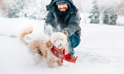 Snowball fight fun with pet and his owner in the snow. Winter holiday emotion.