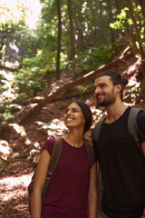 Spain, Canary Islands, La Palma, smiling couple standing in a forest looking around