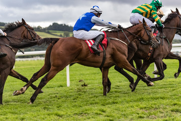Galloping horse racing action