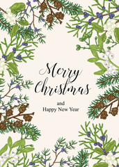 Hand drawn Christmas card with winter plants. Spruse, mistletoe, juniper and cones vector illustration. Botanical design elements.