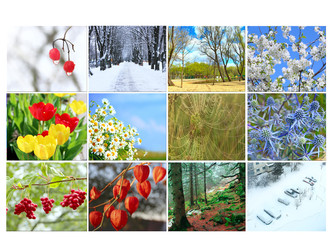 Twelve colored images of nature for calendar
