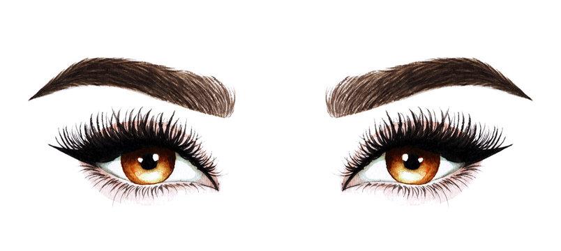 Woman eyes with long eyelashes. Hand drawn watercolor illustration. Eyelashes and eyebrows. Design for eyelash extensions, microblading, mascara, beauty salon, cosmetics, makeup artist. Brown eyes.