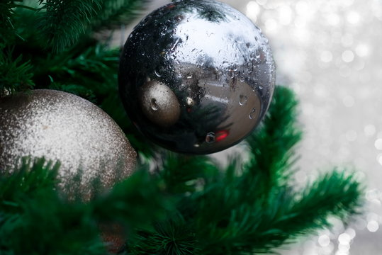 silver ball with drop of water on decoration Christmas green tree with light of white snow background