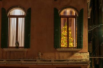 Christmas tree on a beautiful venetian window