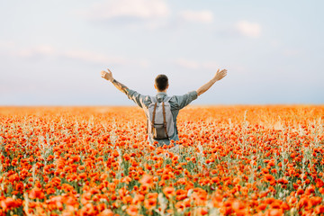 Happy traveler man standing in poppies flowers meadow.