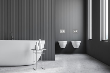 Gray bathroom with toilets