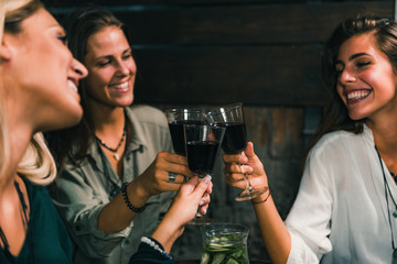 Drinking Red Wine. Young Women Toasting With Red Wine