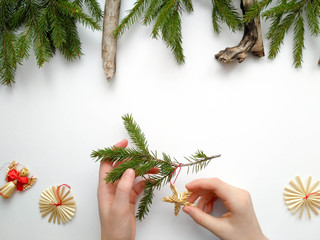 Christmas tree. Spruce branch in the hands of a child. The concept of Christmas and New Year.