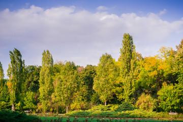 Fall colors in Herastrau Park, Bucharest, Romania