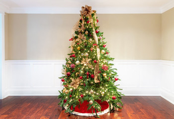 Christmas Tree in Empty Living Room