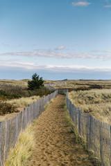 Walkway to Beach On Plum Island
