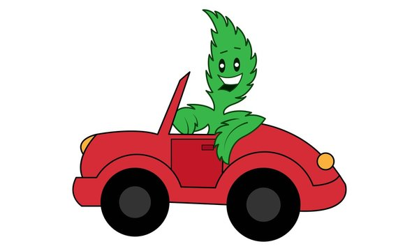 Vector cartoon illustration of marijuana with car. Isolated on white background.