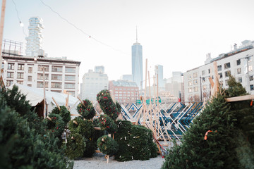 Christmas trees in NYC