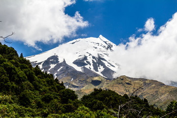 Hidden behind some clouds the snow caps of Mount Taranaki still peak through, Edgemont, National Park, New Zealand