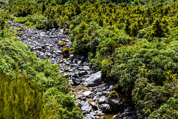 Water flows through a rocky river bed, Edgemont National Park, New Zealand
