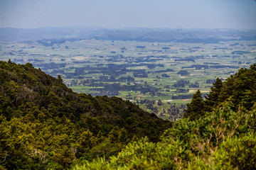 A view into the valley from the hilltop. Egmont, National Park, New Zealand
