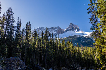 Paget Peak from the Yoho River and the Kicking Horse River confluence, Yoho National Park, British Columbia, Canada