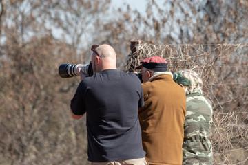 Birders photographing birds
