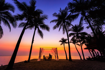 morning sunrise landscapes colourful silhouette coconut space for wedding in love