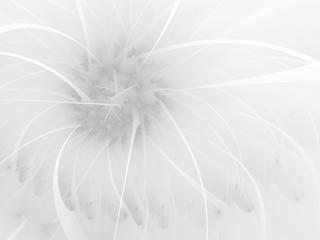 Violet gentle and soft fractal flowers computer generated image for logo, design concepts, web, prints, posters. Flower background