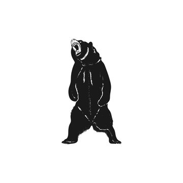 Grizzly bear silhouette shape. Distressed wild animal icon. Stock pictogram isolated on white background
