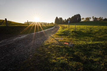Road leading into the green meadows of the Ardennes with beautiful sunrise