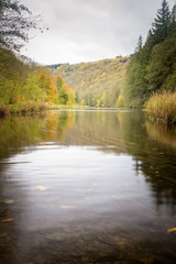 Ourthe river running through the autumn forest with the beautiful red, yellow and orange colors Ardennes