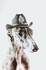 There's a new sheriff in town!